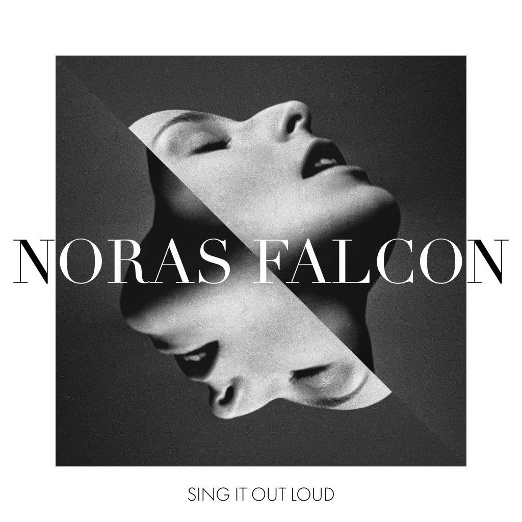 noras_falcon-final-highres-srgb-1