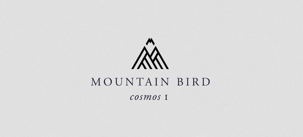 Mountain Bird EP