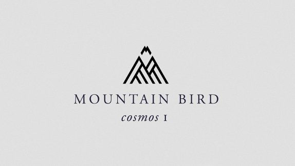 Mountain Bird EP
