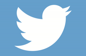 alltwitter-twitter-bird-logo-white-on-blue-1